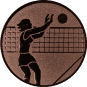 Emblem 50mm Volleyballer Block, bronze