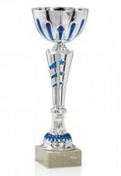 Pokale 6er Serie FS040
