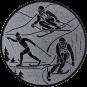 Emblem 25mm Ski, silber