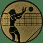 Emblem 25mm Volleyballer Block, gold