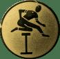 Emblem 50mm Hürdenlauf, gold