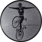 Emblem 50mm Kunstrad, silber