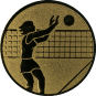 Emblem 50mm Volleyballer Block, gold
