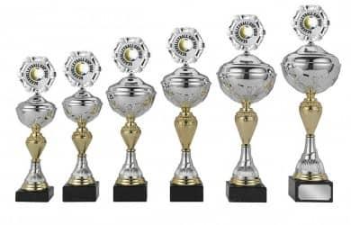 Sale: Pokale 6er Serie S420 silber/gold