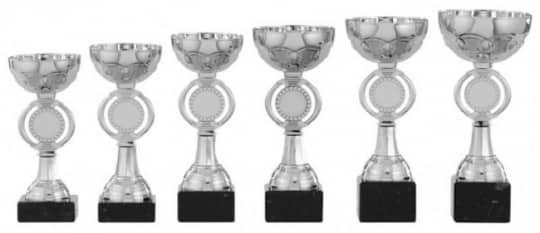Pokale 6er Serie S141 silber 15 cm