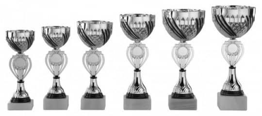 Pokale 6er Serie S463 silber/schwarz 21 cm