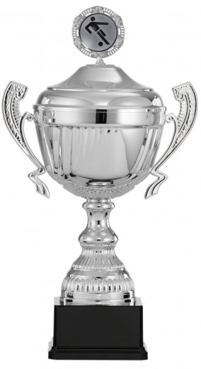 Fußballpokale mit Henkel 6er Serie S916-FB silber 41 cm