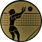 Emblem 25mm Volleyballer Block, gold