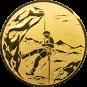 Emblem 50mm Bergsteiger, gold