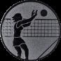 Emblem 50mm Volleyballer Block, silber