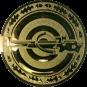 Emblem 50mm Zielsch. mit Armbrust, gold schießen