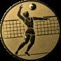 Emblem 50mm Volleyballer, gold