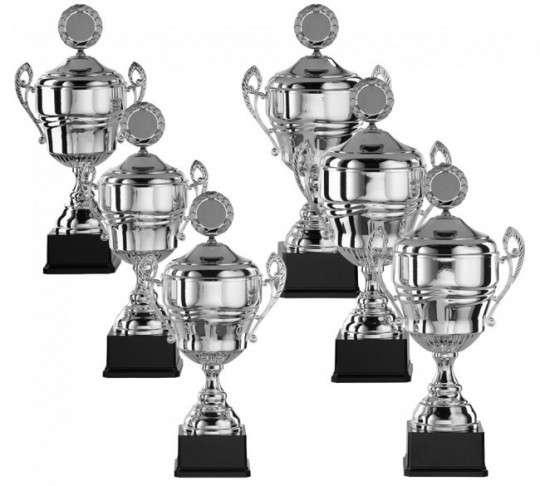 Pokale mit Henkel 6er Serie S918 silber 46 cm
