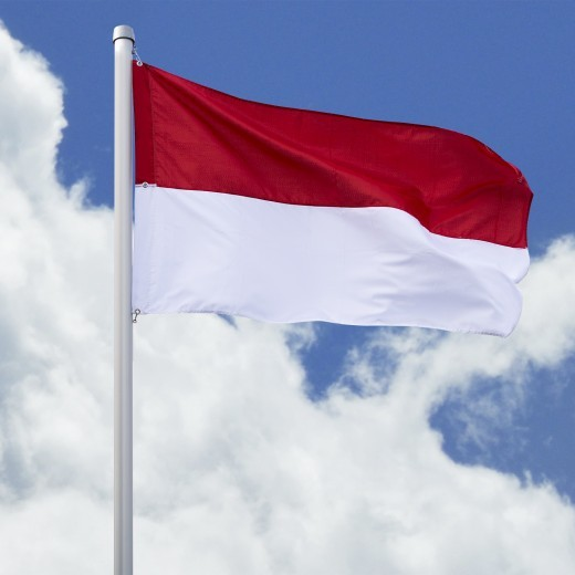 SALE: Hissfahne Quer - Flagge rot-weiß 200 x 335 cm