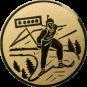 Emblem 25mm Biathlon, gold