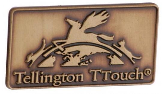 "Pins sandgestrahlt ""Tellington antik br"""