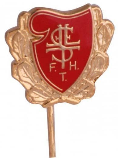 "Anstecknadeln Softemaille ""FTH"""