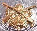 goldenes Schützenemblem