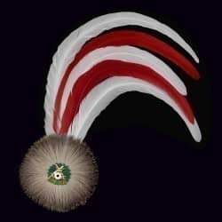 rot/weiße Hahnenschlappe - Schützenfeder mit 5 langen Federn + Flaum