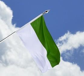 Schützenfahne - Haushängefahne grün-weiß