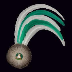 grün/weiße Hahnenschlappe - Schützenfeder mit 5 langen Federn + Flaum