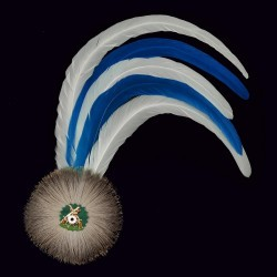 blau/weiße Hahnenschlappe - Schützenfeder mit 5 langen Federn + Flaum