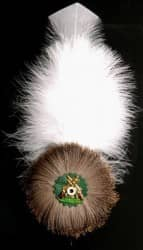 Schützenflaum - Adlerflaumfeder
